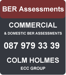 BER Assessor Louth Colm Holms 087 9793339 ECC Group